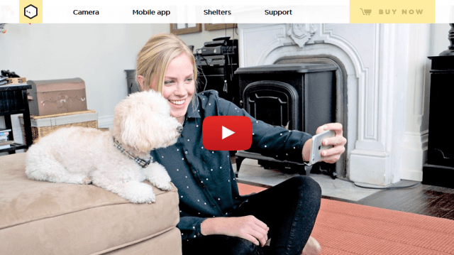 Petcube- remote Wireless Pet Camera Pet Monitor System