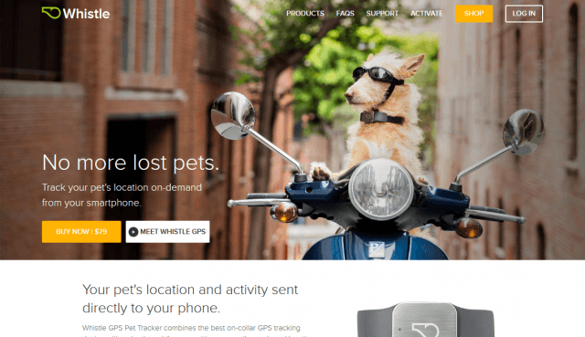 Whistle GPS Pet Tracker for dogs and cats Whistle